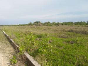 Serviced Residential Land Land for sale Diamond Estate Shibiri close to alaba int'l market Alaba Ojo Lagos