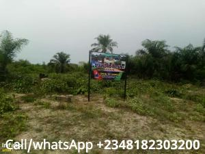 Residential Land Land for sale Along Aba Road, Agbala By Seat Of Wisdom Seminary Owerri Imo