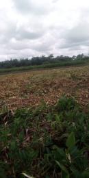 Mixed   Use Land Land for sale Novella garden Ajangbadi Ojo Lagos