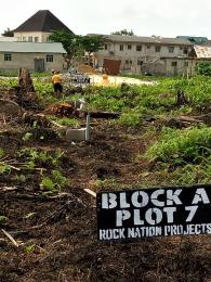 Mixed   Use Land Land for sale Alaba international Ojo Ojo Lagos
