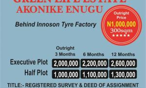 Mixed   Use Land Land for sale  ALONG NSUKKA NEW ROAD, THE ESTATE IS SHARING NEIGHBORHOOD WITH THE FAMOUS CATHOLIC PILGRIMAGE CENTER AKO. Nsukka Enugu