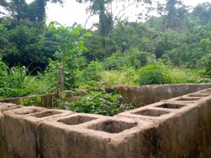 3 bedroom Residential Land Land for sale Agangan Olawoyin Koso off Ayegun Oleyo Road Odo ona Ibadan Oyo