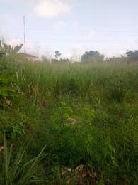 Residential Land Land for sale Half a plot land at abule egba secure area  Abule Egba Abule Egba Lagos