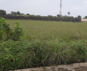 Serviced Residential Land Land for sale Pearl Garden Estate Lekki Phase 2 Lekki Lagos