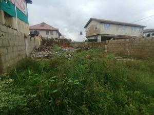 Commercial Property for rent Facing Express Way At Lakowe Lakowe Ajah Lagos