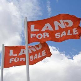 Residential Land Land for sale Peace Estate Ogidon Right After Blanco Supermarket Before Sangotedo  Olokonla Ajah Lagos