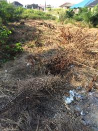 Residential Land Land for sale green leaf estate oluodo ebute ikorodu Ebute Ikorodu Lagos