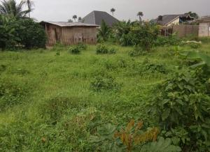Land for sale Umuotube housing estate igbo etche (5 minutes driving distance from ELEME JUNCTION  Etche Rivers
