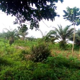 Mixed   Use Land for sale Ikola/ Command Area Ipaja road Ipaja Lagos