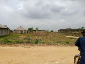 Residential Land Land for sale Elepete phase 1  Agric Ikorodu Lagos