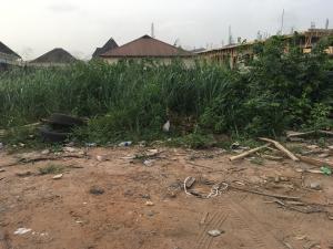 Land for sale Alaagba estate Mulero Agege Lagos