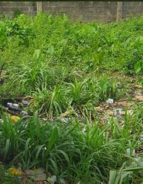 Residential Land Land for sale Beckley estate  Abule Egba Abule Egba Lagos