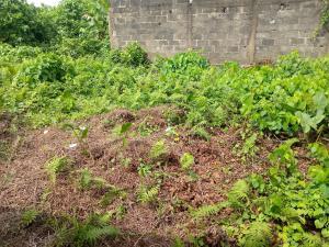 Residential Land Land for sale Okokomaiko Ojo Lagos