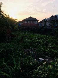 Residential Land Land for sale Journalist estate phase 1 Arepo Arepo Ogun