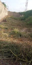 Residential Land Land for sale Owolegbon Atunrase Medina Gbagada Lagos