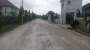 Mixed   Use Land Land for sale Farm Estate ,atali On The Road Atali Port Harcourt Rivers