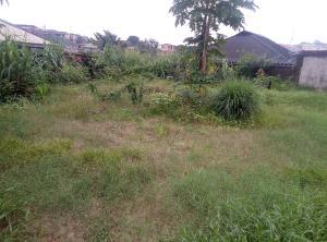 Land for sale Oke-Ira Ogba Lagos