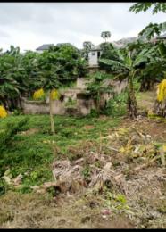 Mixed   Use Land for sale Aiyetoro After Ayobo Ayobo Ipaja Lagos