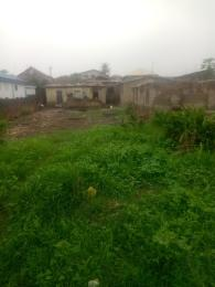Land for sale Aboru Iyana Ipaja Ipaja Lagos