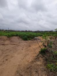 Land for sale Igbodu, Epe Lagos