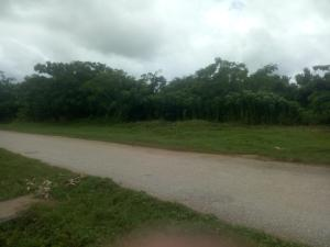 Industrial Land Land for sale Phase 3 Industrial Area of Agbara Estate, Ogun State.  Agbara Agbara-Igbesa Ogun