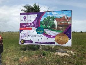 Residential Land Land for sale Opposite La Campagne Tropicana, After Lekki Free Trade Zone Eleko Ibeju-Lekki Lagos