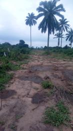 10 bedroom Mixed   Use Land Land for sale Along Airport road Uyo, Akwa Ibom state Uyo Akwa Ibom