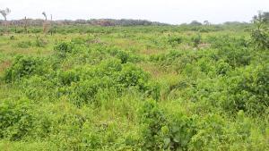 Mixed   Use Land Land for sale Lakowe Eputu Ibeju-Lekki Lagos