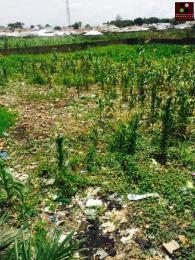 Residential Land Land for sale Jabi, Abuja Jabi Abuja