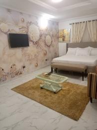 2 bedroom Flat / Apartment for rent   Banana Island Ikoyi Lagos
