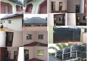 1 bedroom mini flat  Mini flat Flat / Apartment for rent Umudim Village Ukpor, Near Afor Ukpor Market Nnewi South Anambra