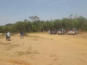 5 bedroom Residential Land Land for sale After Zartech super market, Wuye/Dakibiyu Dakibiyu Abuja