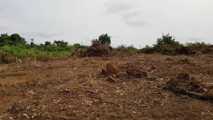Commercial Land Land for sale Agbara-Igbesa Ogun