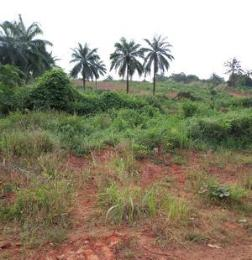Residential Land Land for sale Nkwelle, Anambra Oyi Anambra