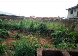 Residential Land Land for sale Elebu Express Oluyole Estate Ibadan Oyo