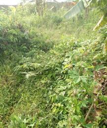 Land for sale Peace Estate, Opposite Redeemed Camp Berger Ojodu Lagos