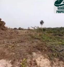 Residential Land Land for sale Elerangbe Ibeju Lekki Lagos Eleranigbe Ibeju-Lekki Lagos
