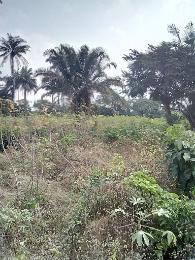 Mixed   Use Land Land for sale Ebenebe road Mgbakwu Awka North Anambra