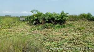 Residential Land Land for sale  Balogun opposite Farapark estate Majek Sangotedo Lagos
