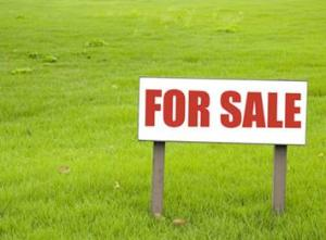 Land for sale Cele Community road Okota Lagos