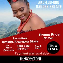 Land for sale Nnewi South Anambra
