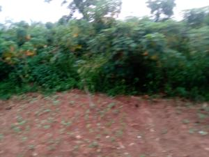 Commercial Land Land for sale Nkwele, Onitsha After Otakwii Junction Onitsha South Anambra