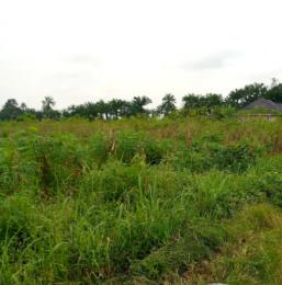 Mixed   Use Land Land for sale - Awka South Anambra