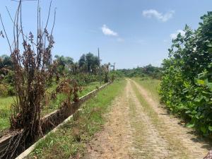 Land for sale On Lanre Ojo Drive Ajah Lagos
