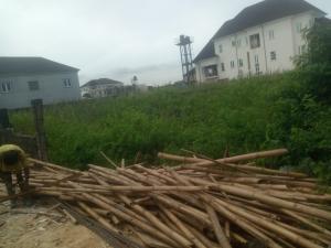 Residential Land for sale Atlantic View Estate Igbo-efon Lekki Lagos