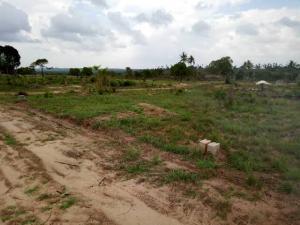 Residential Land Land for sale Nekede, Fortune Garden Estate) Owerri Imo
