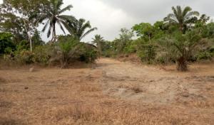 Mixed   Use Land Land for sale wonderland, close to awka millinium city Awka North Anambra