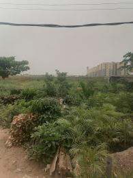Mixed   Use Land Land for sale Freedom Way Lekki Phase 1 Lekki Lagos