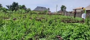 Land for sale Akobo Ibadan Oyo