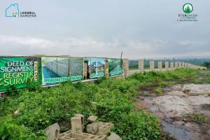 Mixed   Use Land for sale Evergreen Phase 2, Ijako Town Epe, Lagos Epe Lagos